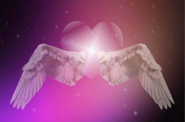 heart, wing, star