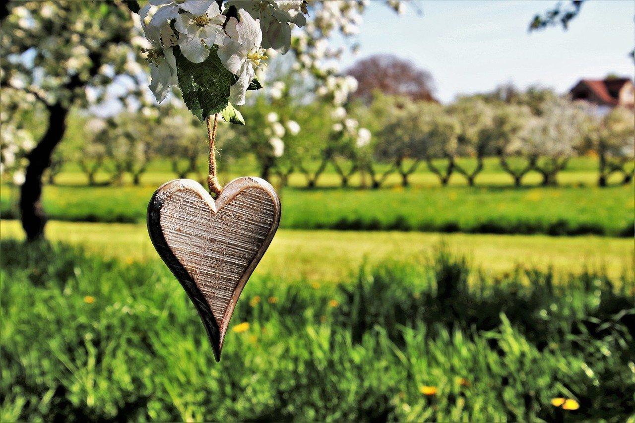 spring, feeling, heart